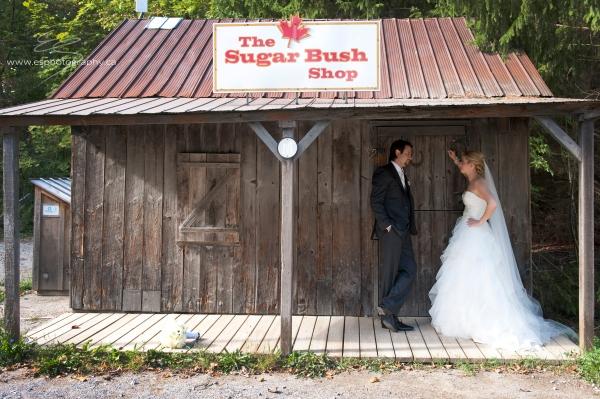 Toronto Wedding Photography0021